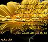 Apld5r04221647