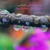 10http://www.lakii.com/vb/album.php?albumid=467&attachmentid=156640